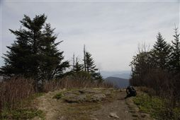 Waterrock Knob Summit